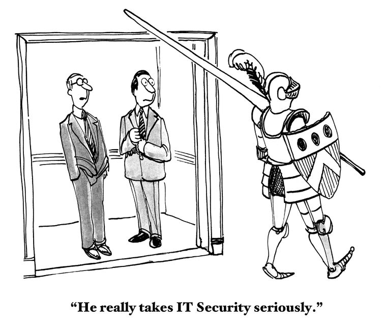 Looking for your cybersecurity knight in shining armor? You found us!